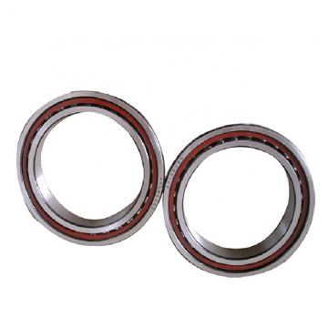 NBS NX 20 Z Cojinetes Complejos